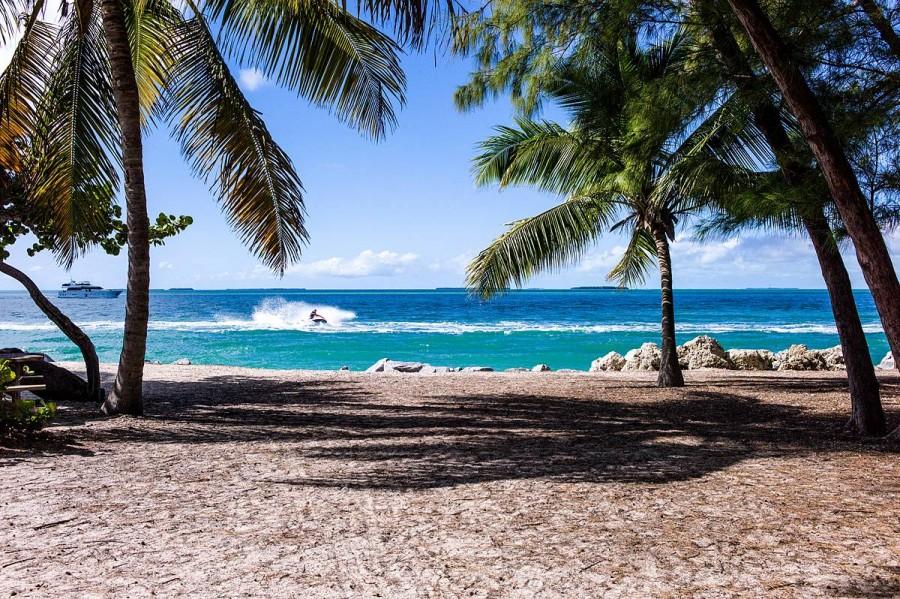 プチ留学におすすめのアメリカ・ハワイ