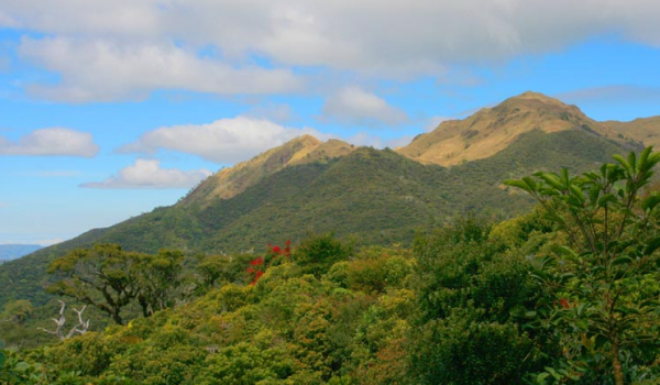 ハミギタン山地野生生物保護区