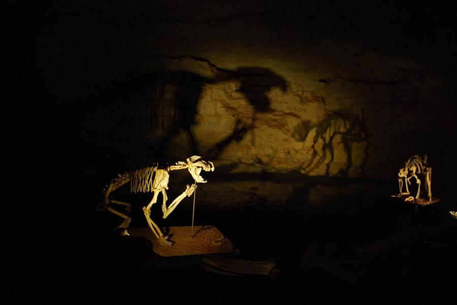 オーストラリアの哺乳類化石地域