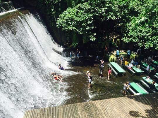 滝つぼランチ