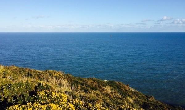 海岸沿いのハイキングコース「Howth Cliff Walk」