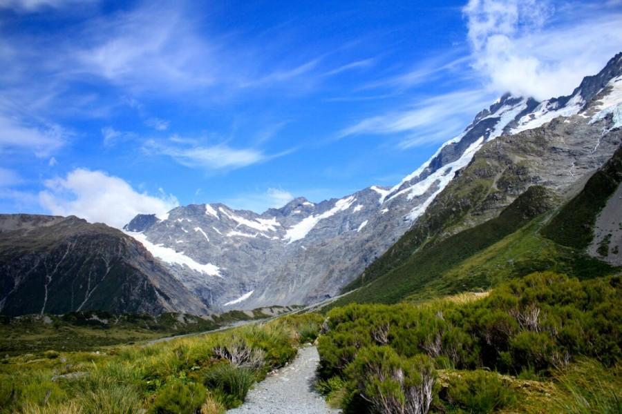 ニュージーランド 自然 ワーホリ