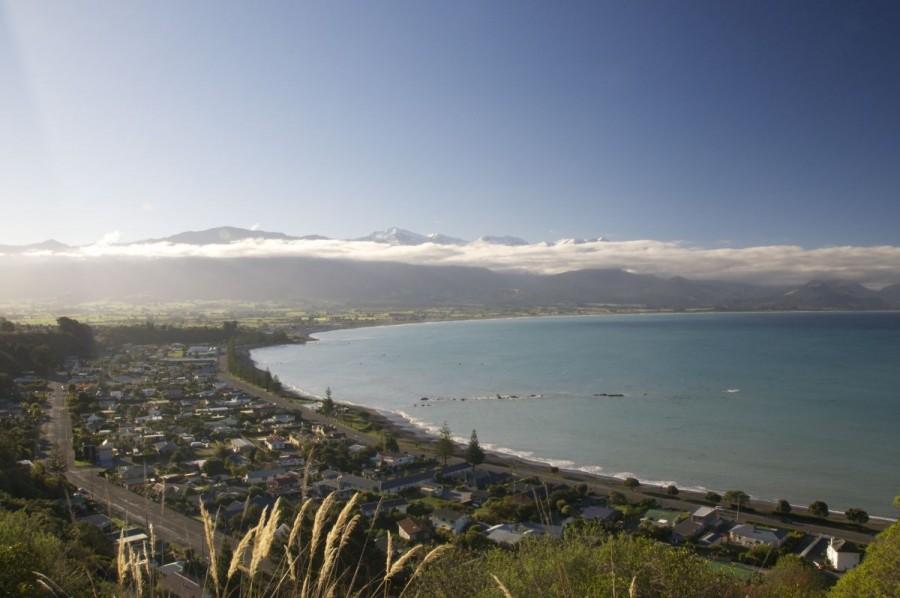 ニュージーランド, カイコウラ