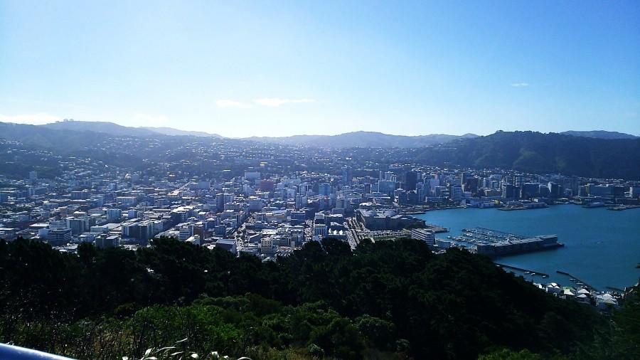 マウントビクトリア山頂からの眺め