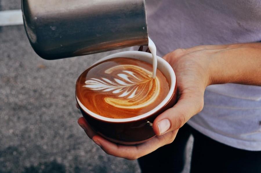 フォートローダーデール カフェ Sip Java Co