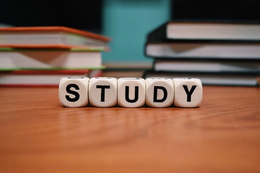 留学 インターン 勉強