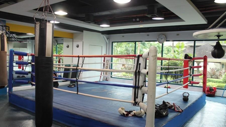 ジム施設 ボクシング用のリング