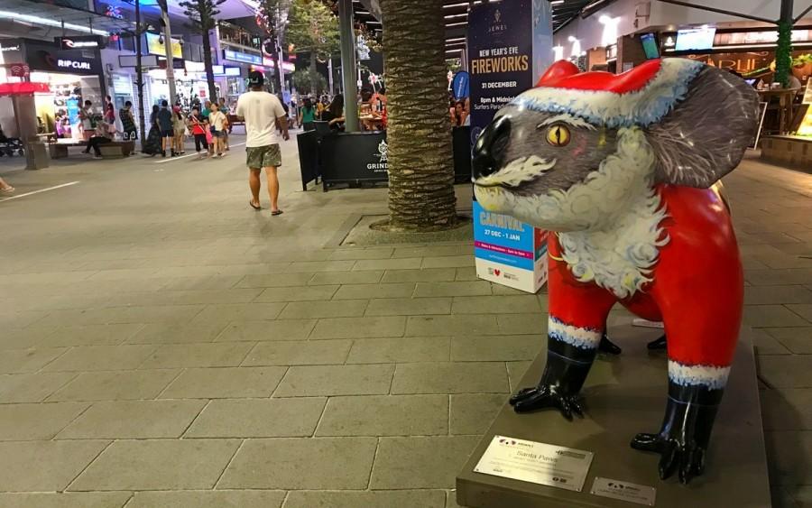 オーストラリアのクリスマス コアラ