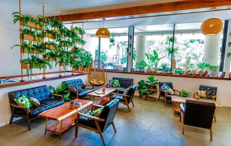 Hawaiian Aroma Caffe