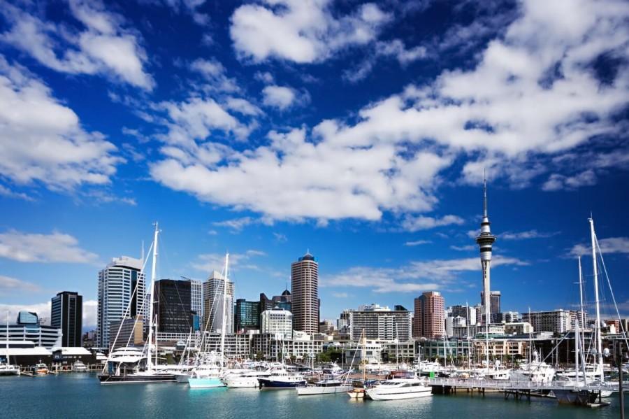 海外 留学 社会人 費用 ニュージーランド