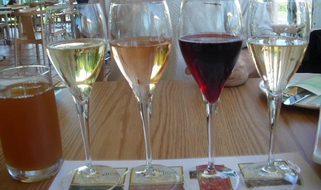 オーストラリアのワインツアー、テイスティング