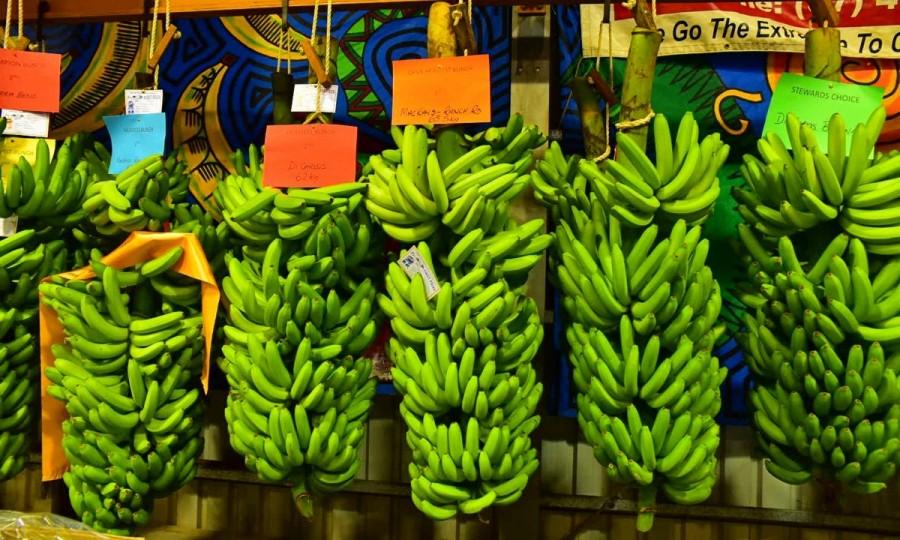 タリーのバナナ