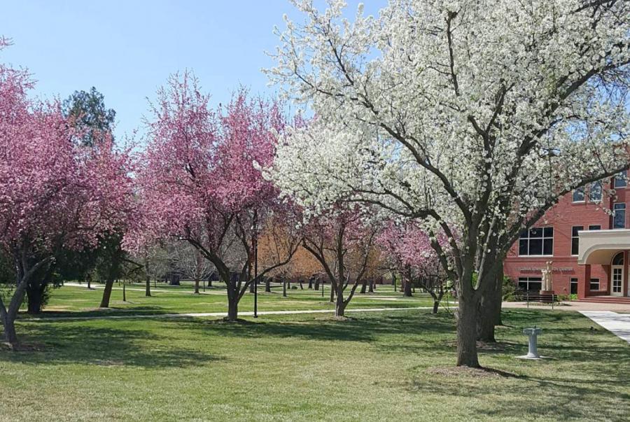ヘストンカレッジ(Hesston College)