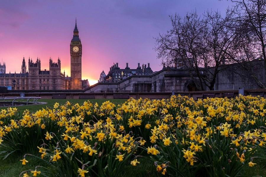 ロンドン 留学 ブログ