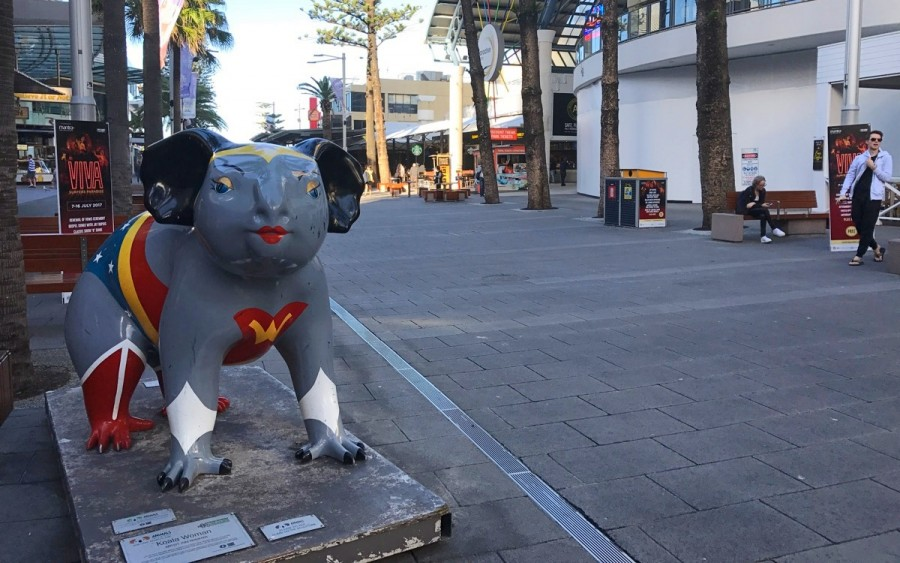 スーパーマンを模した雌のコアラ像