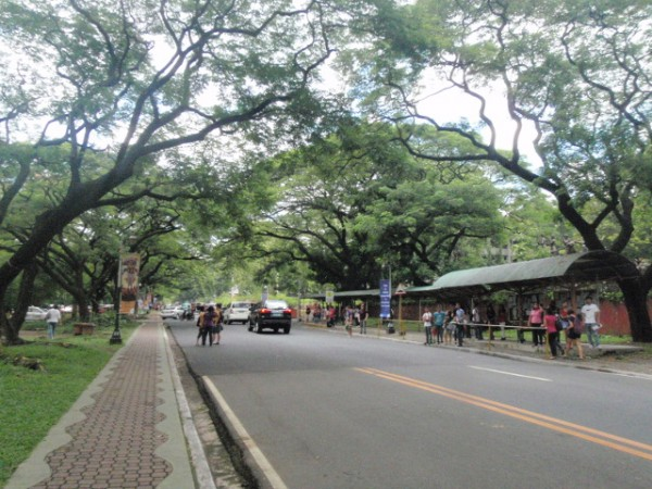 フィリピン大学敷地内のバス停