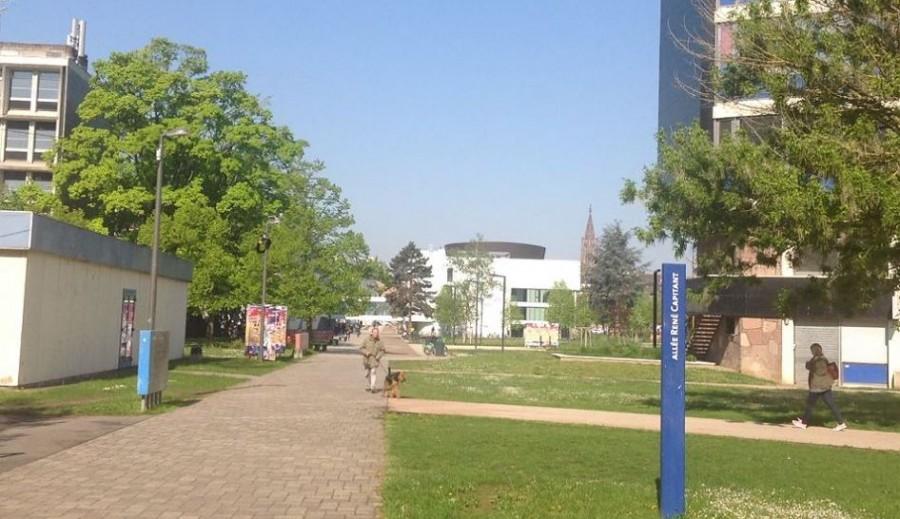 ストラスブール大学