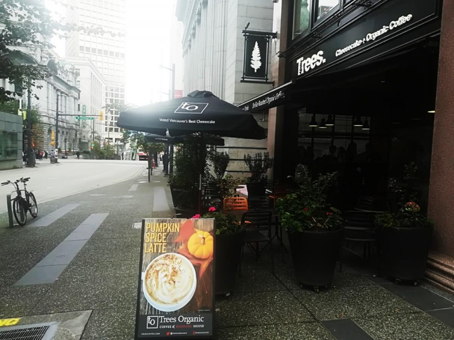 Trees. Cheese Cake&Organic Café (ツリーズ. チーズケーキ&オーガニックカフェ)