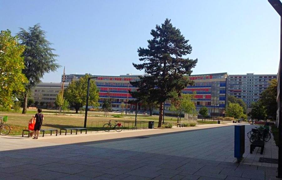 フランスの大学院