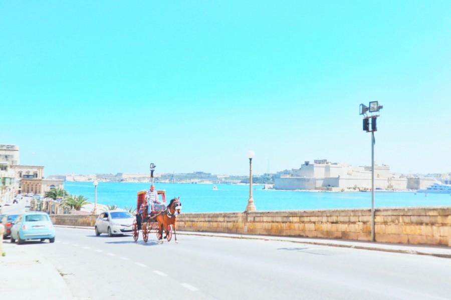 マルタの海と馬車