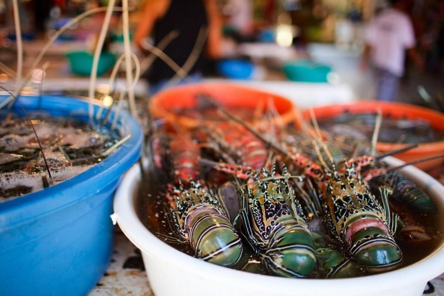 フィリピン 観光 シーフードマーケット