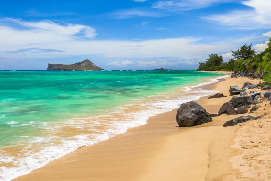 ハワイ 留学 おすすめ