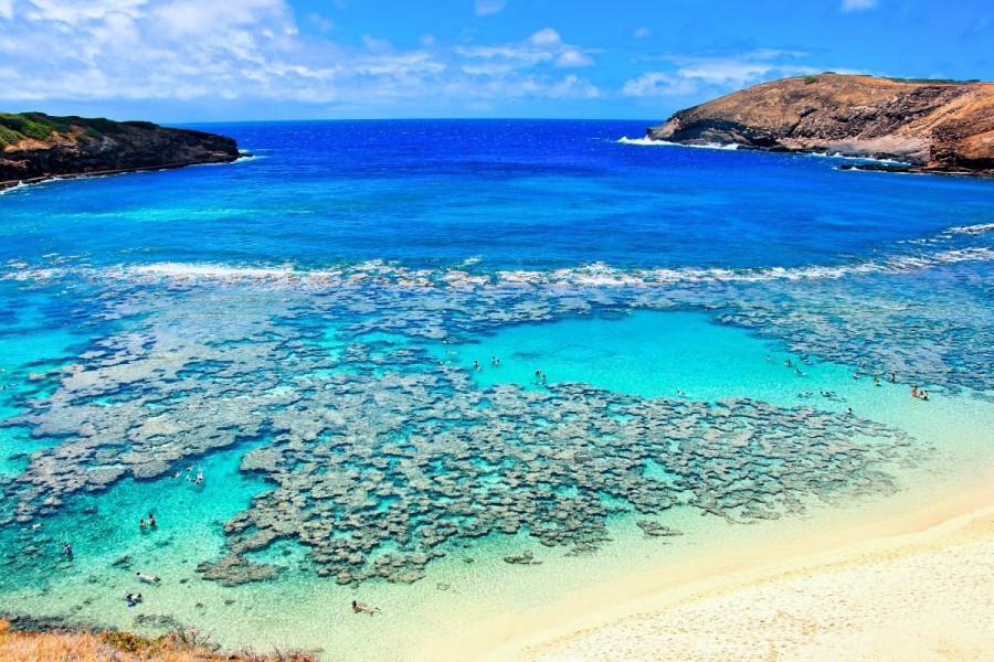 ハワイ 留学 メリット ビーチがある