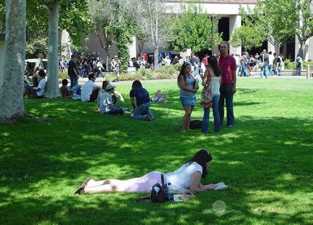 優秀な生徒の多いサドルバックカレッジのキャンパスで現地学生と共に学ぶ!